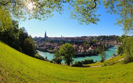 Switzerland, Bern, Aare river, city, trees, meadow