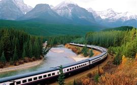 Preview wallpaper Train, forest, river, bend railroad