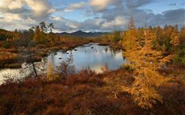 Trees, mountains, lake, clouds, autumn, dusk