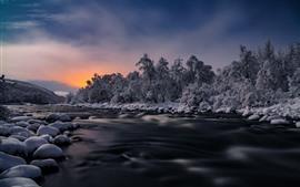 木々、川、雪、冬、夕暮れ