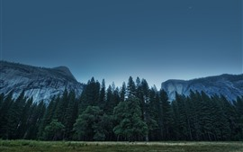 Preview wallpaper USA, Yosemite National Park, trees, mountains, sky, dusk