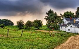 Village, maison, herbe, clôture, arbres, crépuscule