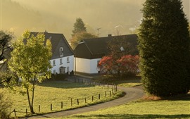 Village, houses, grass, trees, path, fence, fog, morning