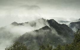 Yanshan, montañas, niebla, mañana, otoño, China
