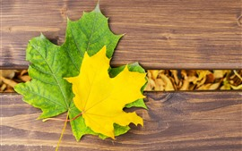 Preview wallpaper Yellow and green maple leaf, bench