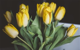 Preview wallpaper Yellow tulips, bouquet, hazy