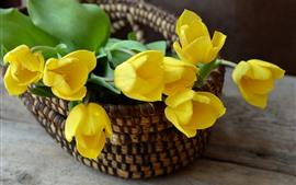 Tulipanes amarillos, flores, cesta