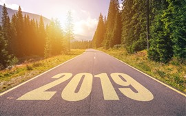 2019 New Year, road, trees, sunshine