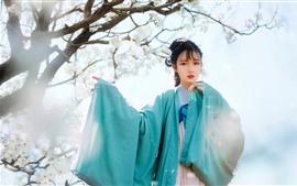 Hermosa joven china, estilo retro, flores blancas de manzana