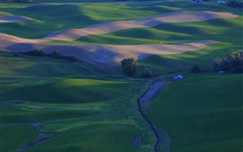 Красивая сельская местность, зеленые пшеничные поля, Palouse, США