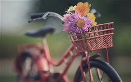 Aperçu fond d'écran Vélo, panier, fleurs