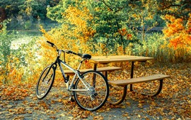 Preview wallpaper Bike, table, trees, leaves, autumn
