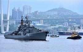 Destroyer, river, bridge, city