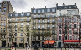 Francia, París, edificios, ventanas, árboles, calle