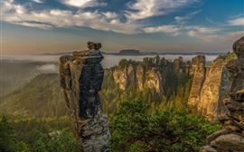 Alemania, Suiza sajona, montañas, rocas, árboles, nubes, niebla, mañana