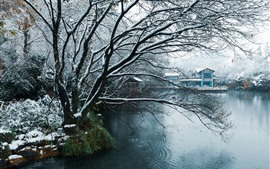 Hangzhou, China, winter, snow, park, trees, pond