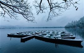 Hangzhou, inverno bonito, barcos, galhos, neve, lago, parque, China