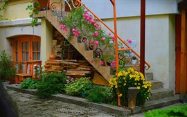 House, stairs, flowers, outside