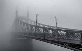 Preview wallpaper Iron bridge, fog, morning, black and white picture