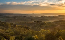 Italy, village, fog, trees, fields, morning, fog