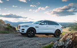 Preview wallpaper Jaguar F-Pace white SUV car side view