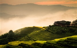 Preview wallpaper Longji rice terraces, morning, fog, mountains, Guilin, China