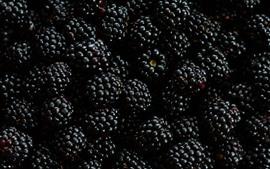 Preview wallpaper Many blackberries, berries, fruit