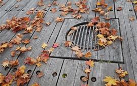 メープルの葉、木の板、地板