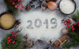 Merry Christmas and Happy New Year 2019, decorations, white powder