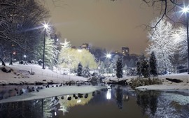 Night, park, snow, pond, trees, lights, city, winter