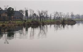 Парк, дом, деревья, пруд, туман, утро