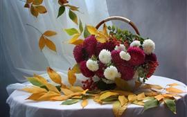 Ásteres rosa e brancos, flores, folhas, bagas, cesta