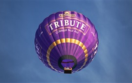 Preview wallpaper Purple hot air balloon