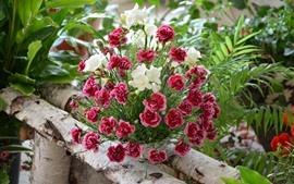 預覽桌布 紅色康乃馨和白花,花束