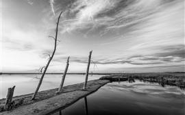 Река, вода, трава, черно-белая картинка
