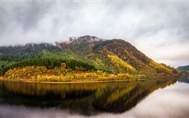 Escocia, Reino Unido, árboles, río, reflexión del agua, otoño