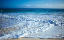 Mar, espuma, playa, costa