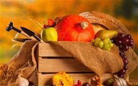 Still life, pumpkin, grapes, pears, box