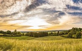 Verano, campos, árboles, pueblo, nubes, puesta de sol.