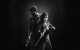 Preview wallpaper The Last of Us, black and white picture