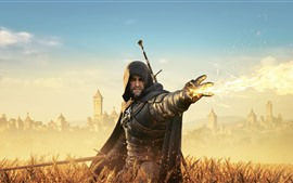 Preview wallpaper The Witcher 3: Wild Hunt, flame, wheat field