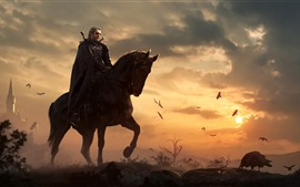 The Witcher 3: Wild Hunt, caballo, atardecer, pájaros
