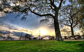 Árvores, ponte, grama, pôr do sol, nuvens