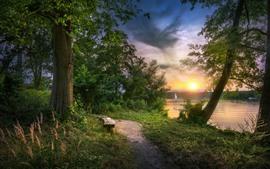 Árboles, lago, barcos, sol.