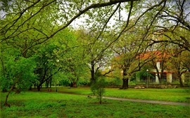 Preview wallpaper Trees, meadow, park, fence, house, green, spring