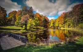 Árvores, rio, ponte, parque, outono