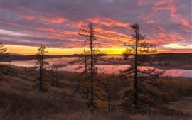 Árboles, río, hierba, nubes, cielo rojo, niebla, salida del sol, mañana