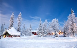 Árboles, invierno, nieve, casas, mundo blanco.