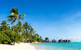 Tropical nature scenery, beach, sea, palm trees, huts, resort, blue sky