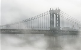 Preview wallpaper USA, New York, Brooklyn, bridge, fog, morning
